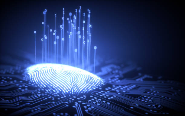 Factors to Consider Before Hiring a Fingerprinting Service Provider